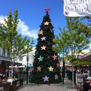 Launceston City Council Christmas Tree