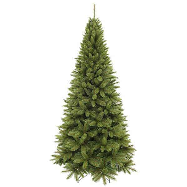Undecorated slim Geneva Christmas tree