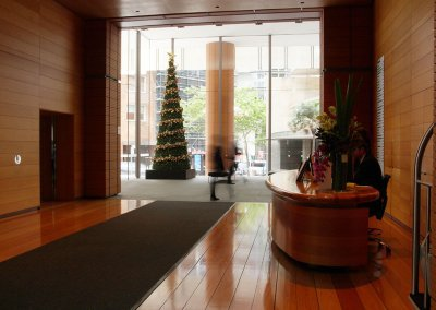 Collins St Sydney Christmas Tree Reception