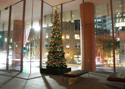 Collins St Sydney Christmas Tree Night