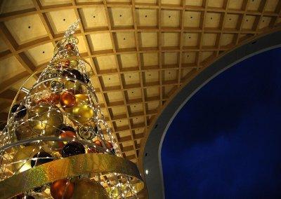 City of Casey Christmas Tree at Night