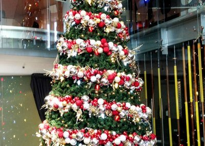 Salamanca Place Traditional Christmas Tree