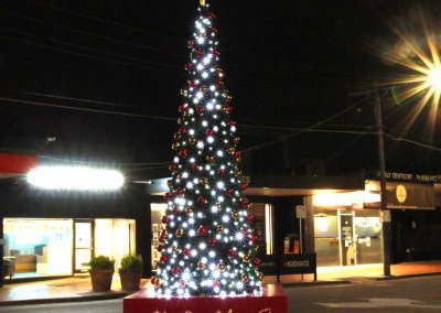Bayside City Council Tree At Night
