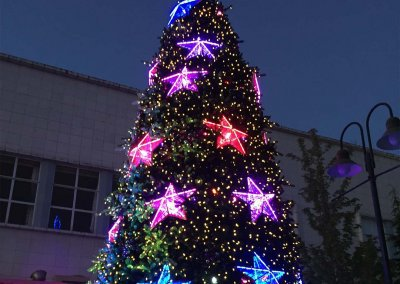 Launceston City Council Christmas Tree Close Up
